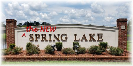 The New Spring Lake